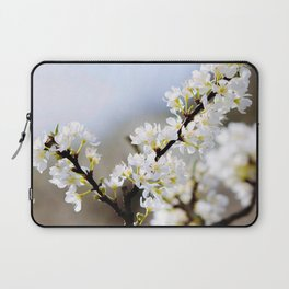 Plum flower, Photo Plum flower, Plum flower hill, beautiful view, Poster print, Canavas Print, Wall Hanging Laptop Sleeve