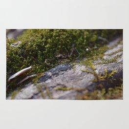Moss on Log Rug