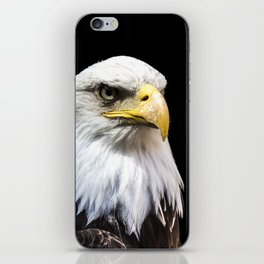 Majestuous Bald Eagle iPhone Skin
