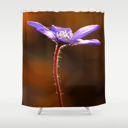 Solo Purple Anemone Forest #decor #society6 Shower Curtain