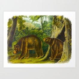 Cinnamon Bear Art Print