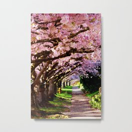 trees and blossoms Metal Print