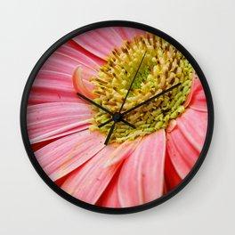 Pale Pink Gerbera Daisy Wall Clock