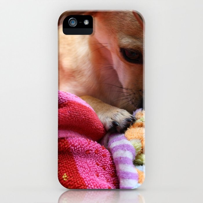 Perro Playing  iPhone Case