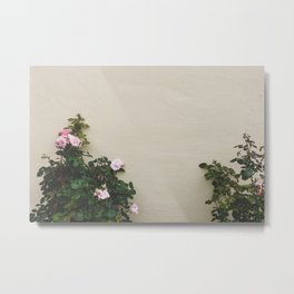 Wallflowers Metal Print