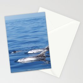 Beautiful risso´s dolphins in Tenerife Stationery Cards