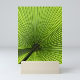 saw palmetto in sunlight Mini Art Print