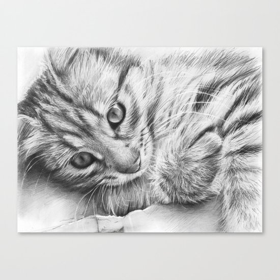 Cat Kitten Dawing Canvas Print