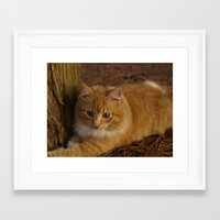 agnes Framed Art Prints featuring Agnes by Garden Windows Photography