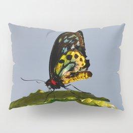 The Queen Alexandra Bird Wing Butterfly by Teresa Thompson Pillow Sham