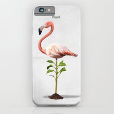 Planted Slim Case iPhone 6s