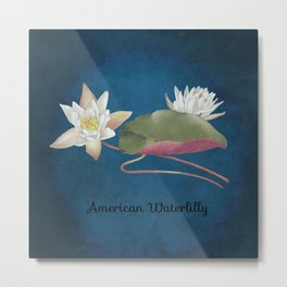 American Waterlilly Metal Print