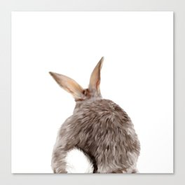 Bunny back side Canvas Print