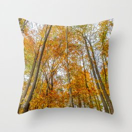 Reach High and Touch the Sky Throw Pillow