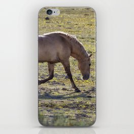 Moves of a Stallion iPhone Skin