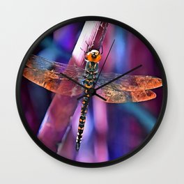 Dragonfly In Orange and Blue Wall Clock