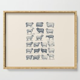 Types of Sheep Serving Tray