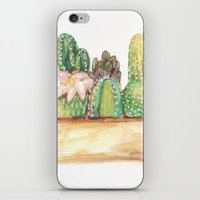 cacti iPhone & iPod Skins featuring Cacti by Diana Willard