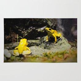 Golden Dart Frog Rug