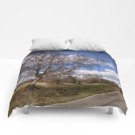Birch On The Common Comforters
