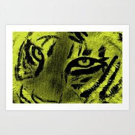 Tiger Eyes - Lime Art Print