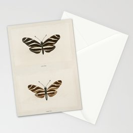 Zebra Longwing (Heliconia Charitonia) from Moths and butterflies of the United States (1900) by Sher Stationery Cards