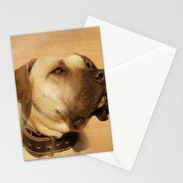 Perro de Presa Canario - Dogo Canario Stationery Cards