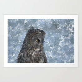 Contemplation - Great Grey Owl Portrait Art Print