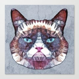 abstract grouchy cat Canvas Print