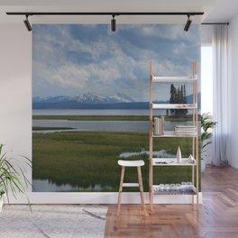 Pelican Creek - Yellowstone Lake Wall Mural