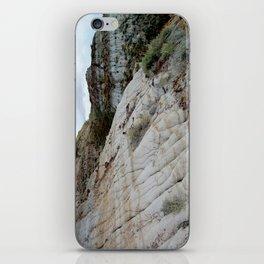 Badlands Formations iPhone Skin