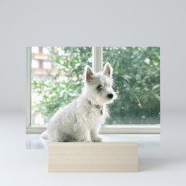 Cute puppy by Lydia Tan Mini Art Print