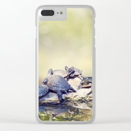 Florida Turtles Sunning on the rocks in Florida wetlands Clear iPhone Case