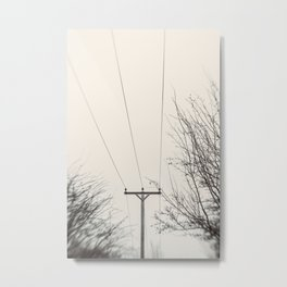 Echoes in the Air Metal Print