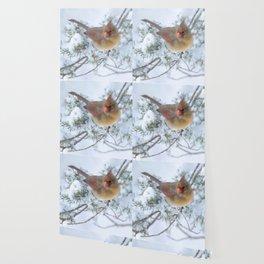 Drifting (Northern Cardinal) Wallpaper