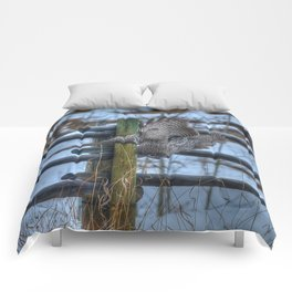 Dive, Dive, Dive! - Great Grey Owl Hunting Comforters