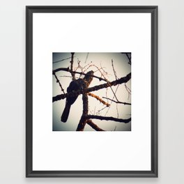 BLCKBTY Photography 001 Framed Art Print