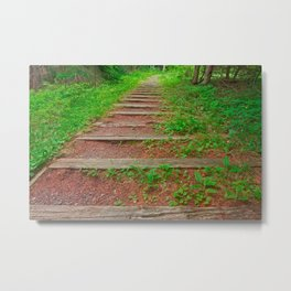Cape Breton Forest Trail Metal Print