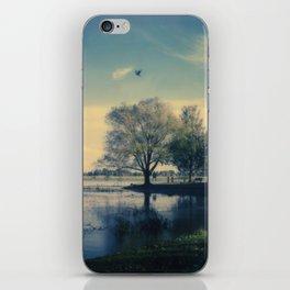 Lake Wendouree iPhone Skin