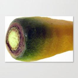 yello carrot top vegetable portrait Canvas Print