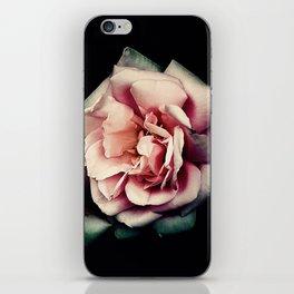 Perfumed Roses, Breathe Deeply iPhone Skin