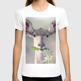 Kudu portrait T-shirt