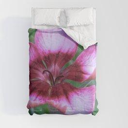 Pink gillyflower Comforters