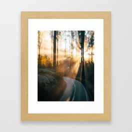 Sun rays through the trees, magical sunrise in Black Spur Australia Framed Art Print
