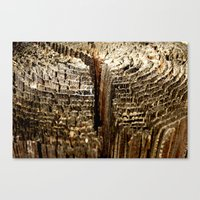 tree rings Canvas Prints featuring Tree Rings by tracy-Me