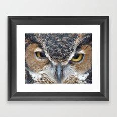 owl V Framed Art Print