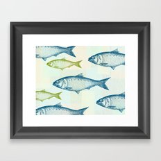 Vintage Fish Framed Art Print