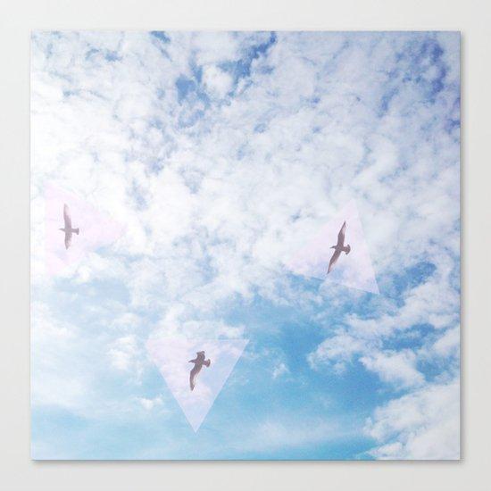 Flight Path Canvas Print