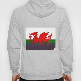 Welsh Flag with Audience Hoody