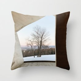 Williamstown Winter Landscape Photograph Throw Pillow
